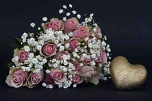 roses-1420718_1920